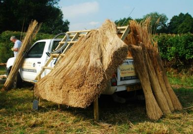 Thatching display by Richard Dray