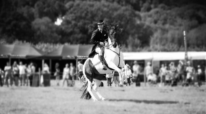 The Outrageous Dressage team performing dressage at the Lustleigh Village Show