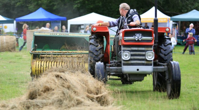 A vintage Massey-Ferguson tractor demonstrates hay baling by the Haypole Boys at the Lustleigh Village Show