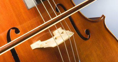 A close up of a cello