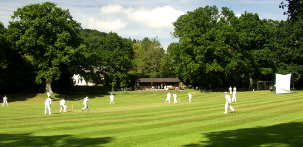 A game in progress at the Lustleigh Cricket Club in the bright sunshine
