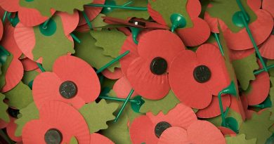 Poppies for the Royal British Legion Poppy Appeal