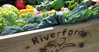 A Riverford Farm organic veg box