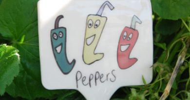 A ceramic garden marker featuring smiling cartoon peppers