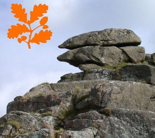 Image of Trow Tor superimposed with the National Trust logo