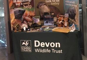 The Devon Wildlife Trust display stand