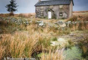 Dartmoor Magazine